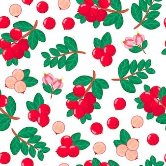 Vector cartoon naadloze patroon met vaccinium oxycoccos of amerikaanse veenbessen exotisch fruit, bloemen en bladeren