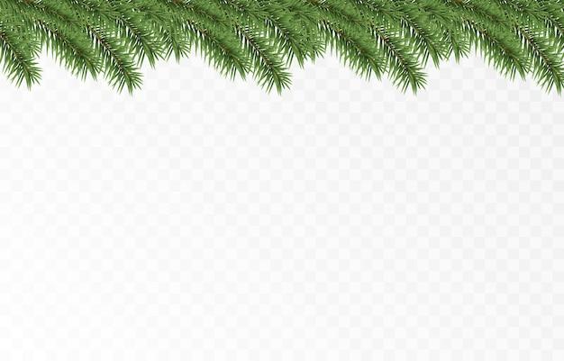 Vector dennentakken vuren takken png grenen sparren kerstversiering kerst achtergrond