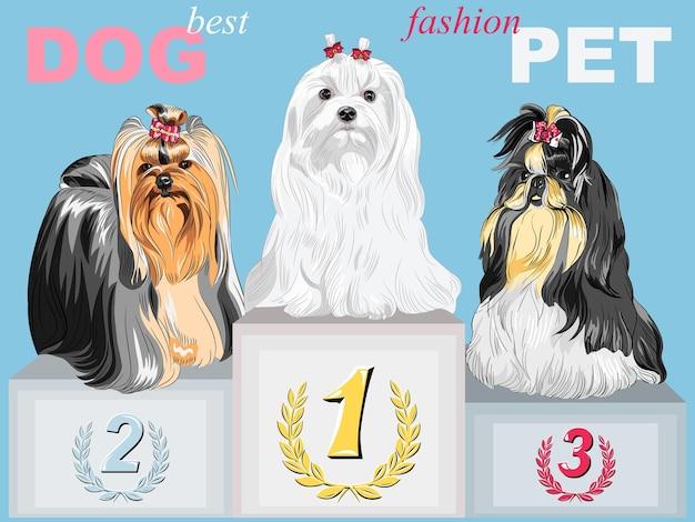 Vector fashion dog kampioen op het podium