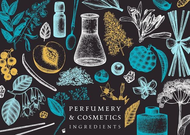 Vector frame met geurige vruchten en bloemen op schoolbord parfumerie en cosmetica ingrediënten illustratie aromatische en geneeskrachtige planten ontwerpen botanische sjabloon voor uitnodiging of kaart