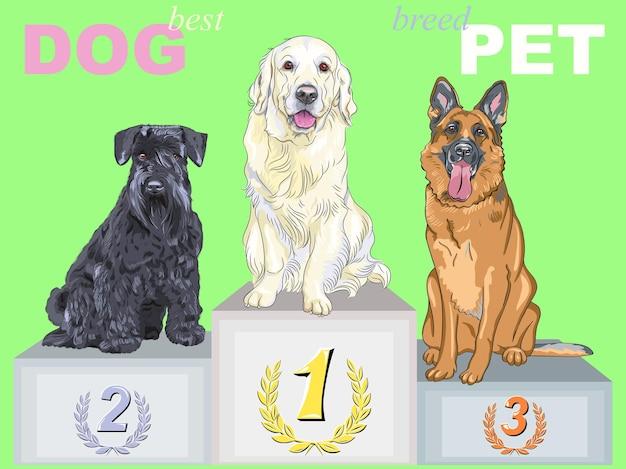 Vector gelukkige hondkampioen op het podium