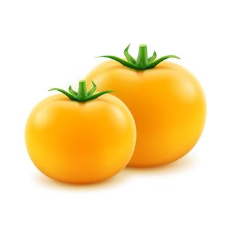 Vector grote rijpe gele verse hele tomaten op wit