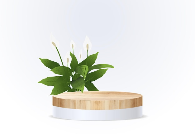 Vector houten podium op muur kamer achtergrond, presentatie mock up, toon cosmetisch product display podium sokkel ontwerp