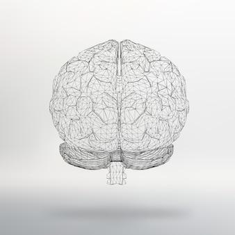 Vector illustratie menselijk brein abstracte achtergrond moleculair rooster veelhoekige ontwerpstijl
