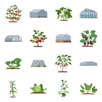 Vector illustratie van broeikasgassen en planten pictogram. set van broeikasgassen en tuin stock symbool voor web.