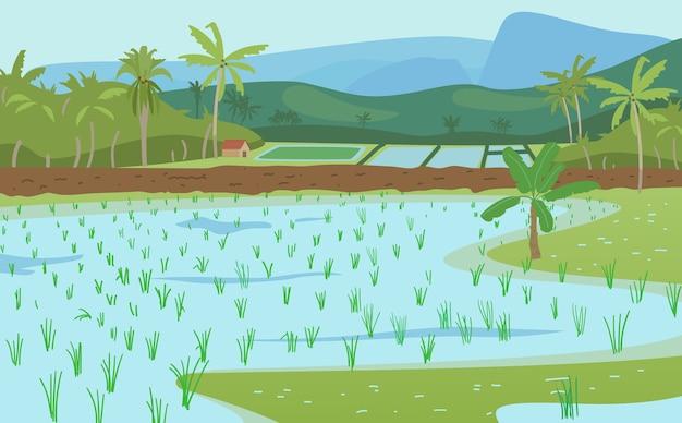 Vector illustratie van indische rijstvelden. rijstplantages landschap met palmen, bergen, hut.