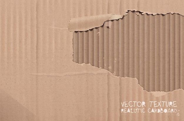 Vector kartonnen textuur. realistische gescheurde kartonnen achtergrond.