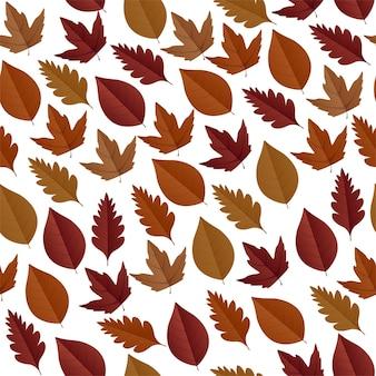 Vector naadloos met herfst esdoorn bladeren
