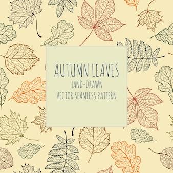 Vector naadloze patroon handgetekende uit herfst boombladeren (kastanje, eik, esdoorn, els)