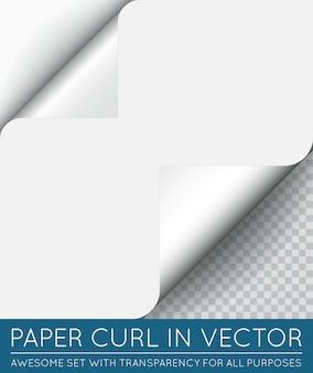 Vector papier paginakrul met schaduw geïsoleerd.