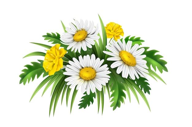 Vector realistisch geplaatst bloemenboeket. daisy en korenbloemen. kamille geel met witte bloemen en groene bladeren. zomer bloemen.