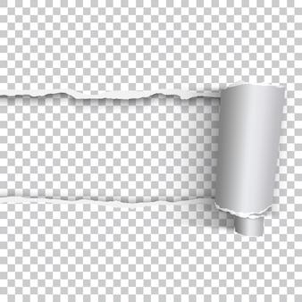 Vector realistisch gescheurd papier met opgerolde rand op transparante achtergrond