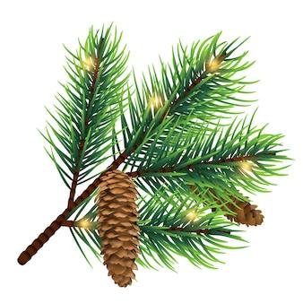 Vector realistische fir tree branch met kegel en lichten geïsoleerd op een witte achtergrond