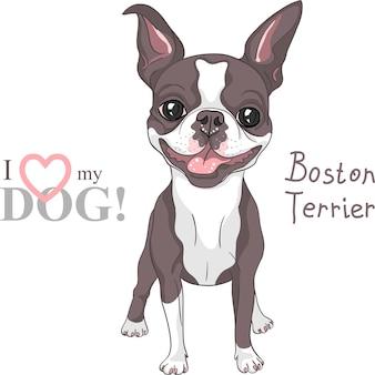 Vector schets hond boston terrier ras glimlachen
