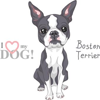 Vector schets hond boston terrier ras serieus