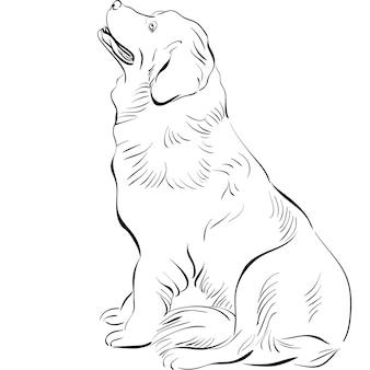 Vector schets hond newfoundland hondenras zitten
