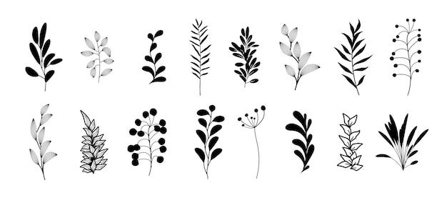 Vector set boheemse stijl planten, takken, twijgen. collectie van botanische zwarte huis muur kunst decor boho elementen geïsoleerd op een witte achtergrond. bloemmotief bundel