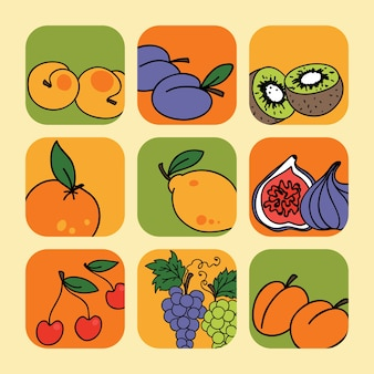 Vector set met fruit pictogrammen