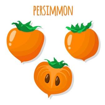 Vector set persimmon.