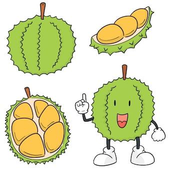 Vector set van durian