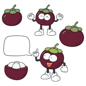 Vector set van mangosteen