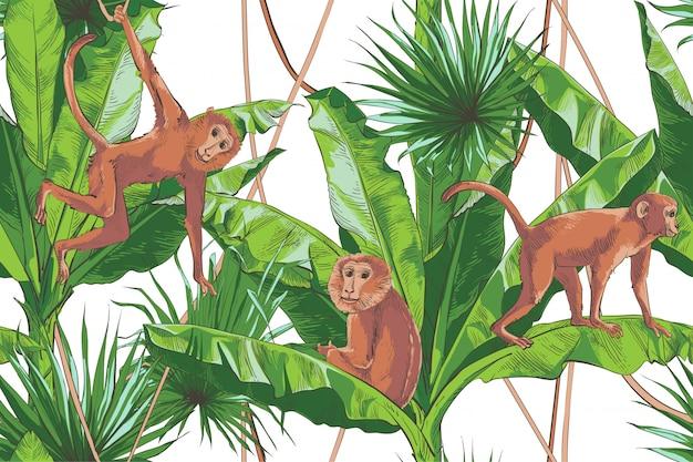 Vector tropisch bananen palm weefsel naadloos patroon.
