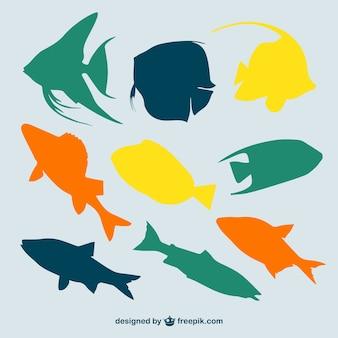 Vector veelkleurige vissen silhouetten