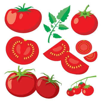 Vector verse tomaten in vlakke stijl. gezond plantaardig voedsel, organische rijpe verse natuurlijke illustratie