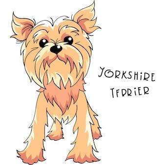 Vector yorkshire terrier hond