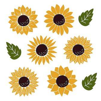 Vector zonnebloemen set geïsoleerd op wit