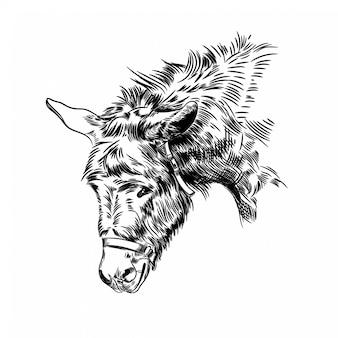 Vectorbeeld van het hoofd van een ezel
