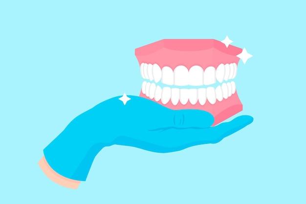 Vectorbeeldverhaalhand van een tandarts in een blauwe handschoen die een anatomisch tanddemomodel van menselijke kaak en tanden houdt.