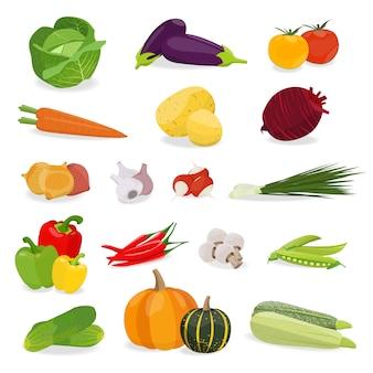 Vectorillustratie met vastgestelde groente. gezond eten.