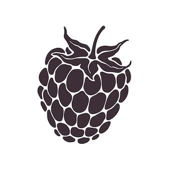 Vectorillustratie silhouet van bramen of frambozenfruit met steel