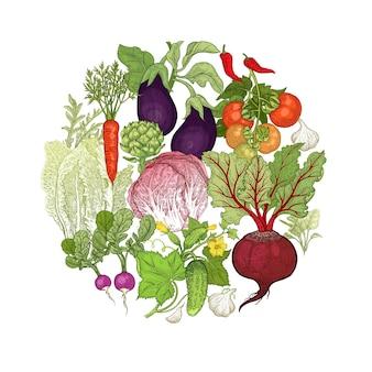 Vectorillustratie van groenten in een cirkel