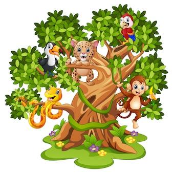 Vectorillustratie van het beeldverhaal van wilde dieren op de bomen