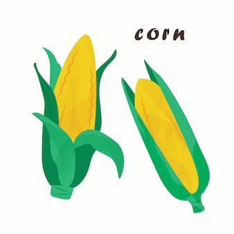 Vectorillustratie van maïs. geïsoleerd op een witte achtergrond.