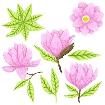 Vectorillustratie van mooie magnolia, lentebloem geïsoleerd op een witte achtergrond.