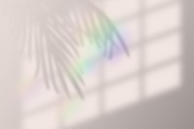 Vectorillustratie van realistische tropische schaduw overlay-effect met regenbooglens flare