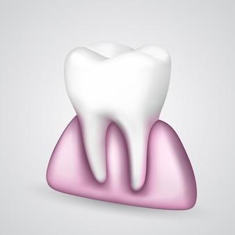 Vectortand in het tandvlees. vector illustratie kunst 10eps