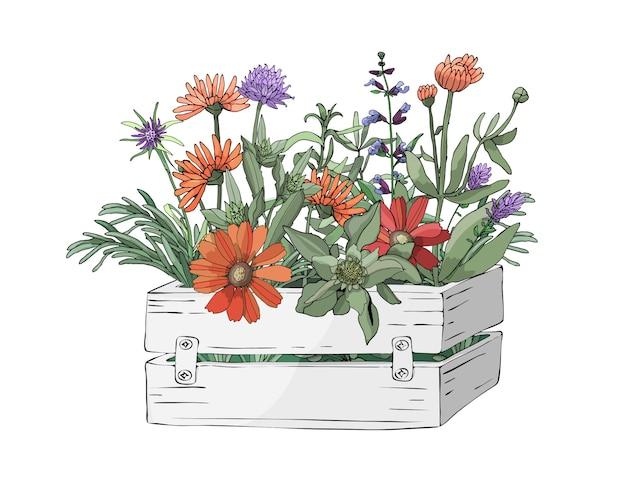 Vectortuinbloemen in een tuin houten witte doos