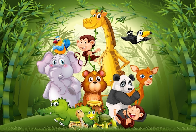 Veel dieren in bamboebos