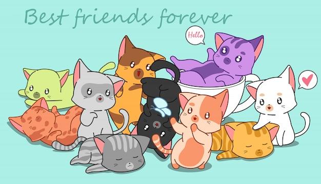 Veel kleine schattige katten.