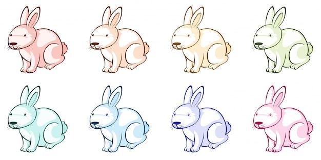 Veel konijnen in verschillende kleuren