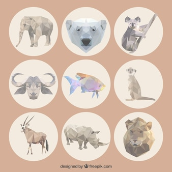 Veelhoekige dieren