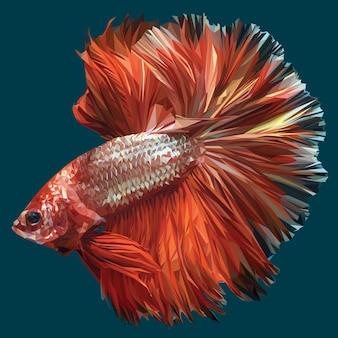 veelhoekige illustratie van betta of siamese kempvissen.