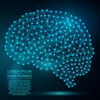 Veelhoekige menselijke hersensamenvatting
