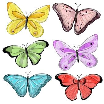 Veelkleurige vlinders.