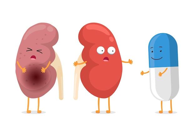 Verdrietig lijden zieke en schattige gezonde verbazing nier met medicijn pil karakters. menselijke anatomie urogenitale systeem interne ongezonde en sterke organen. vector cartoon afbeelding