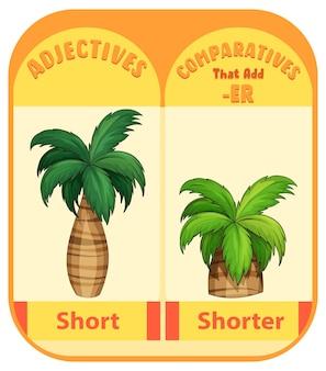 Vergelijkende bijvoeglijke naamwoorden voor woord kort